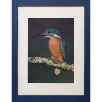 Kirlew – Kingfisher