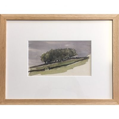 Quant – Trees Sketch Above Bradfield