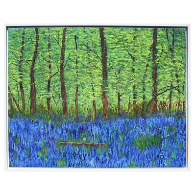 Dean – Bluebell Wood