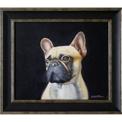Ball – French Bulldog