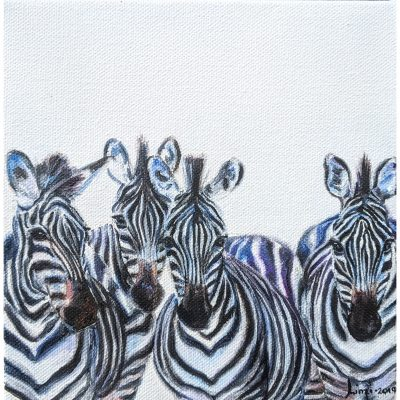 Pattison – Together (Zebras)