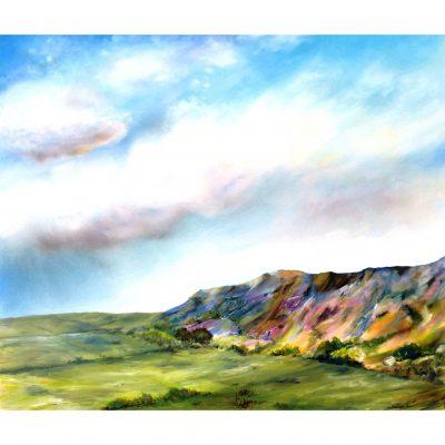 Fox – North Yorkshire Moors