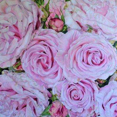 Oodian – Pink Rose Adagio