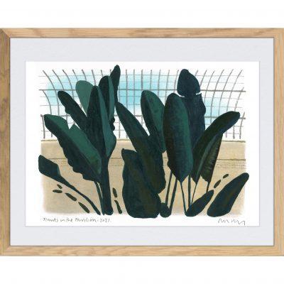 Mumby – Plants in the Pavillion