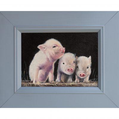 Ball – Three Little Pigs